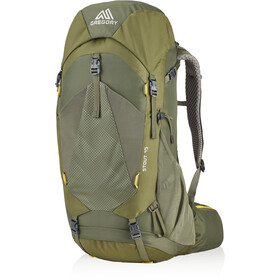 Gregory Stout 45 Backpack Men fennel green